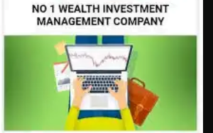 Pennywise Wealth Management Review: Is Pennywise legit Or Scam? Let me Say Something About It.