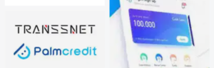Palmcredit Review: Is Palmcredit Real?
